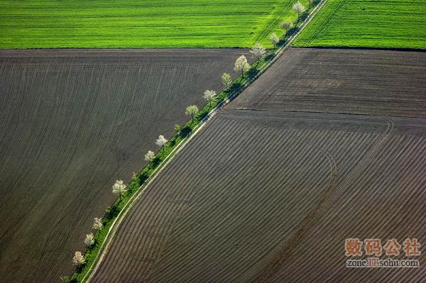 梦幻般的农田